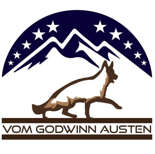 Picture of Godwinn Austen