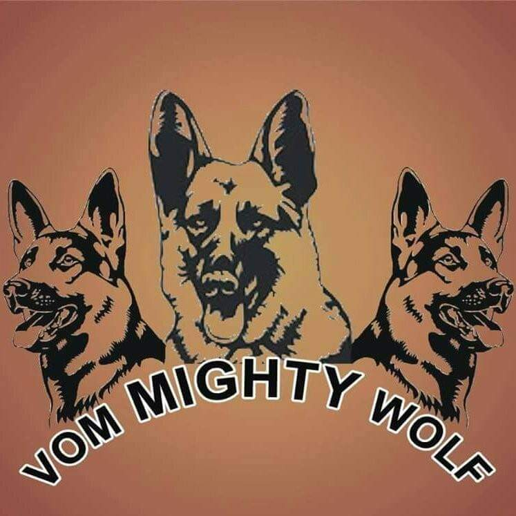 Picture of Mighty Wolf